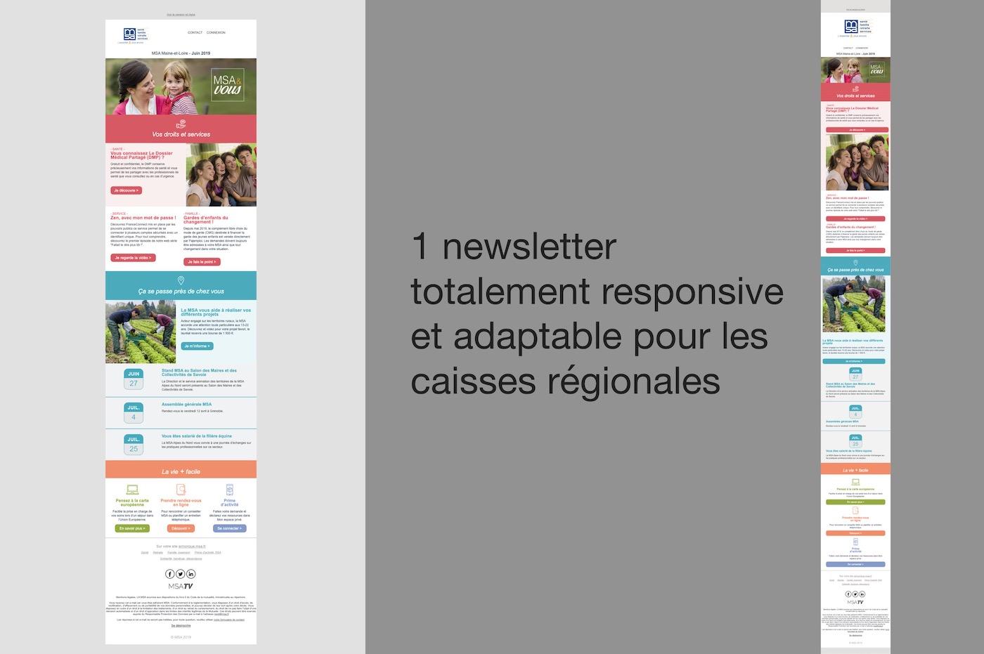 newsletter msa illustration