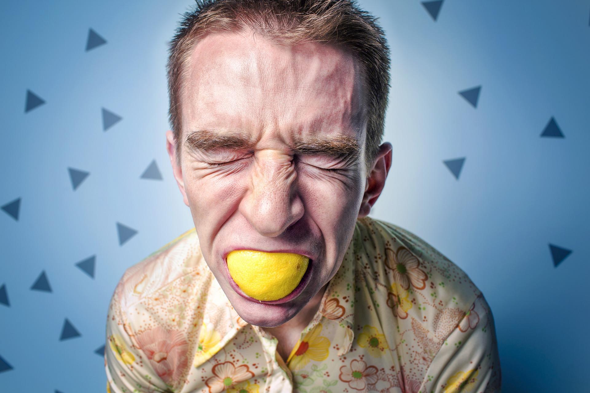 Lemonade Assurance Polémique