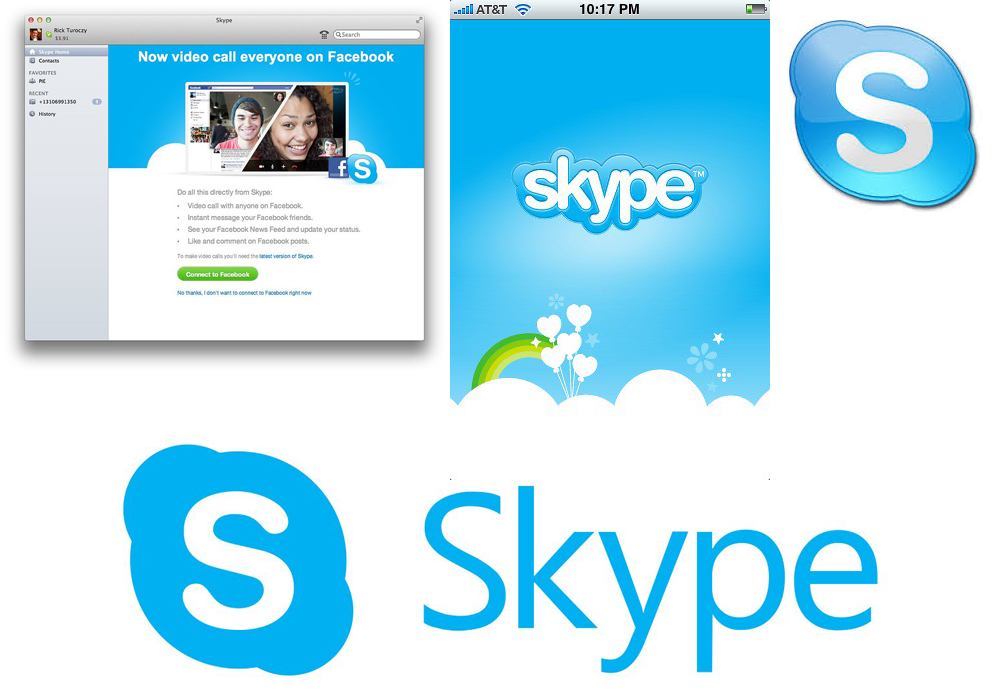 exemple charte graphique Skype